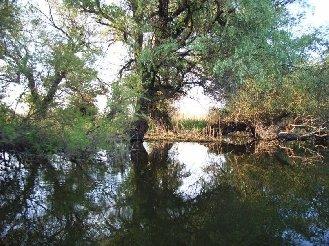 Cazare Delta Dunarii - Pensiunea Portita